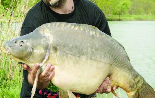 норми трофейните риби