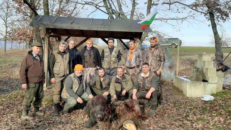 сава лов