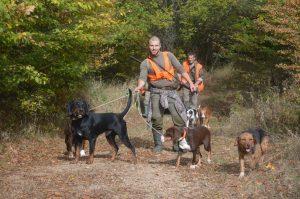 Лов с кучета