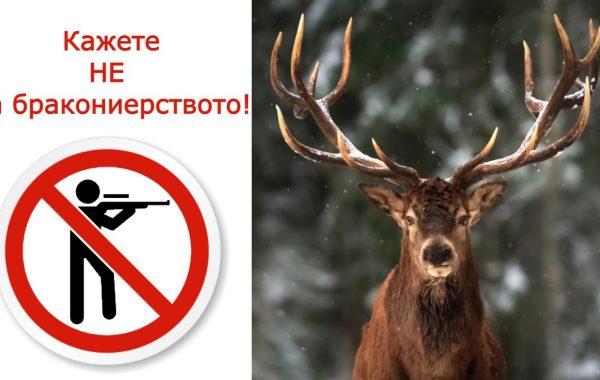 Не на бракониерството
