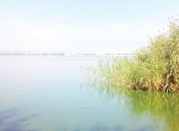 езерото вая