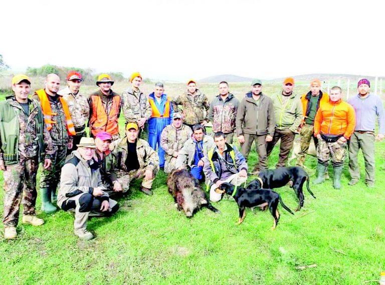 Айтоски дружини се отказват от лова на дива свиня, за да възстановят популацията