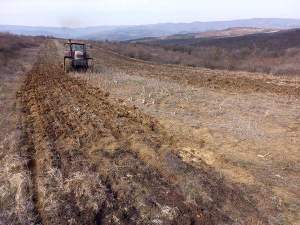 280 дка дивечови ниви са засети в ЛРС-Радомир