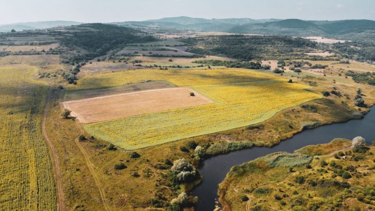 становище обща селскостопанска политика