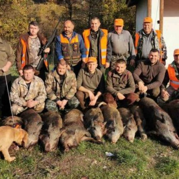 шумнатица лов
